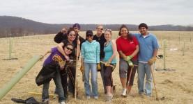Why Volunteer Over Spring Break?